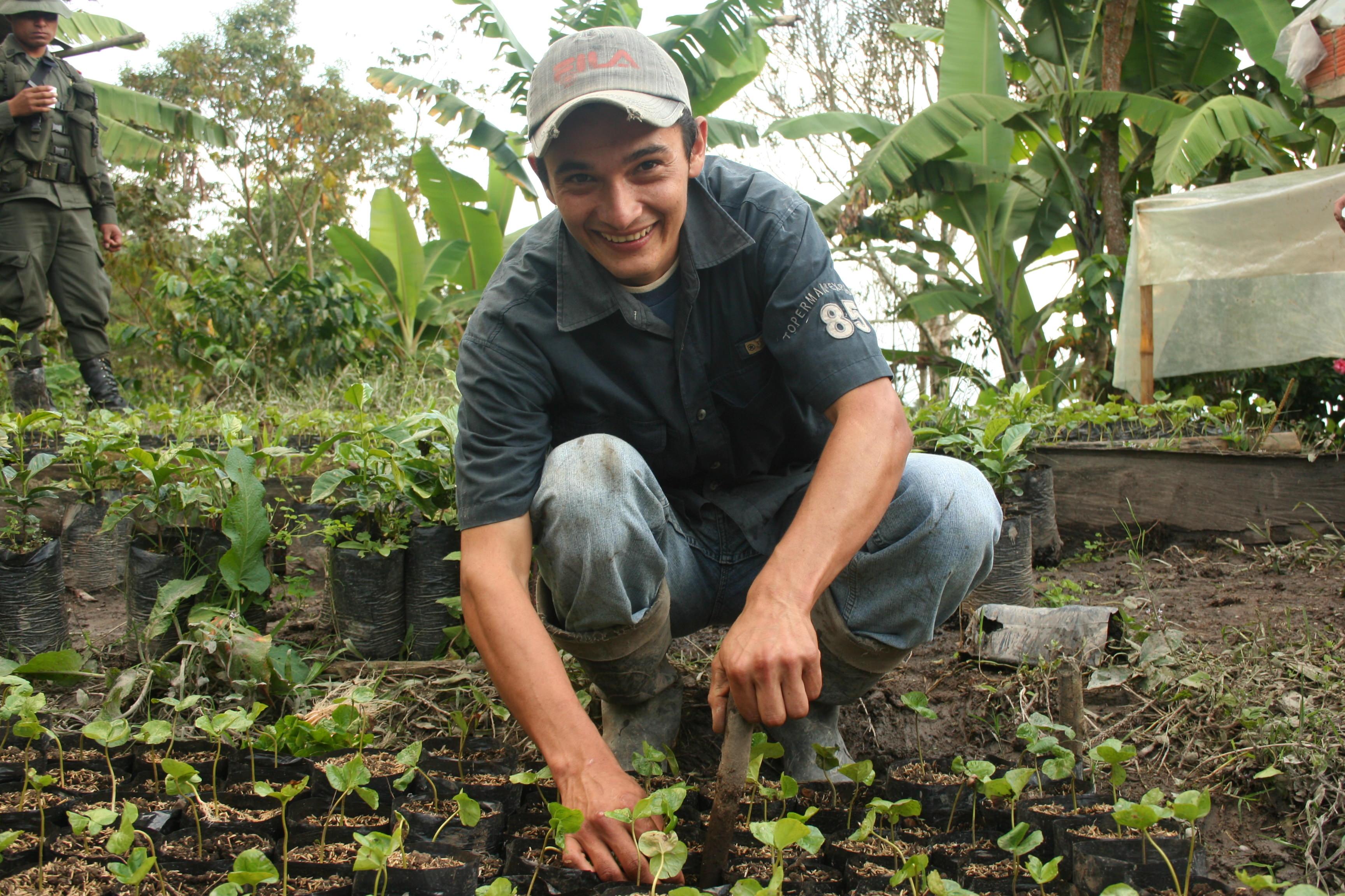 Farm worker tending to coffee nursery on a Rainforest Alliance Certified farm.