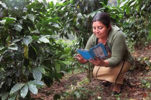 Smartphones Are Transforming Farmers' Livelihoods