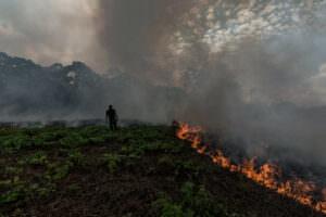Ein brennendes Feld im Amazonas