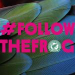 #FollowTheFrog Is Almost Here