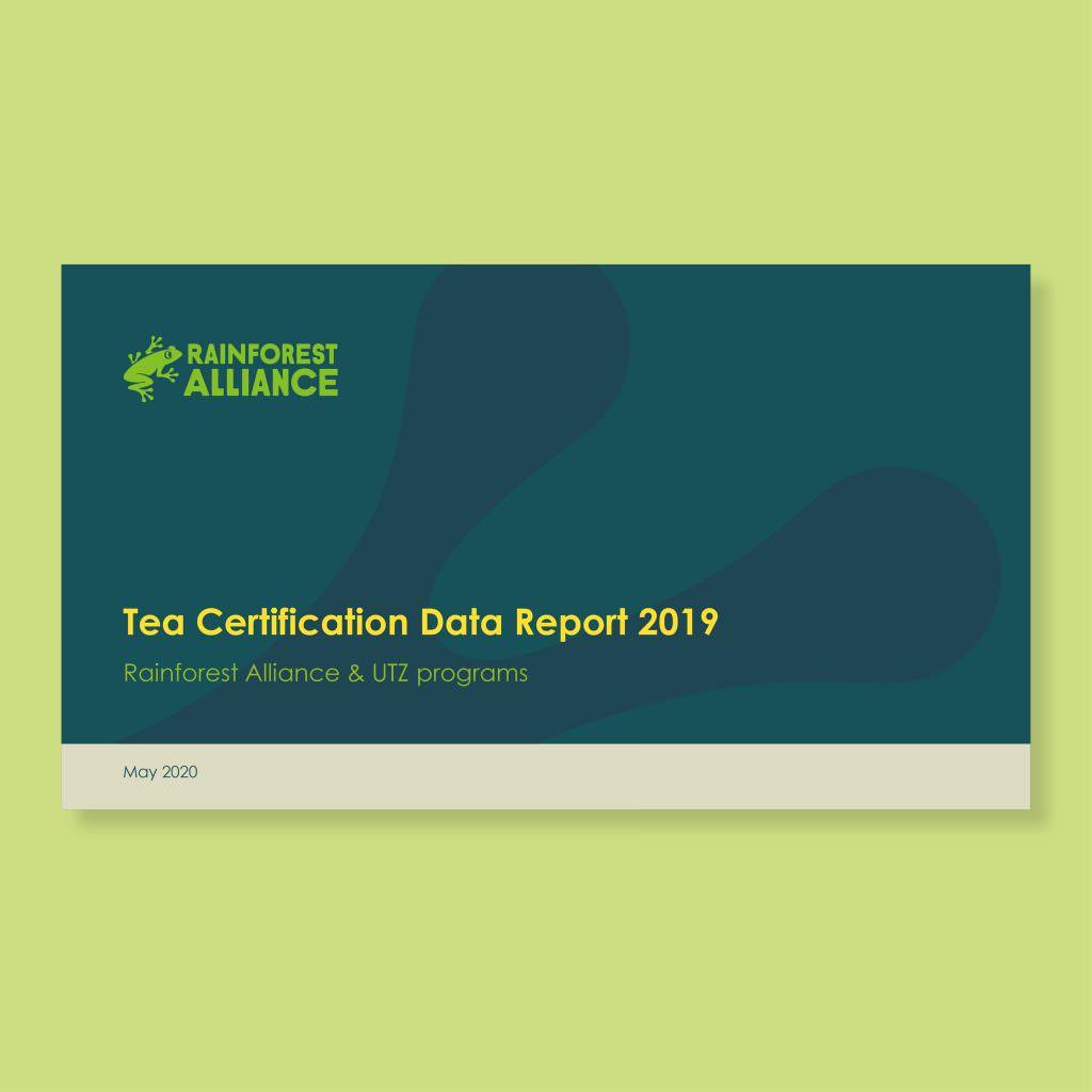 tea certification report data rainforest alliance coffee business reports