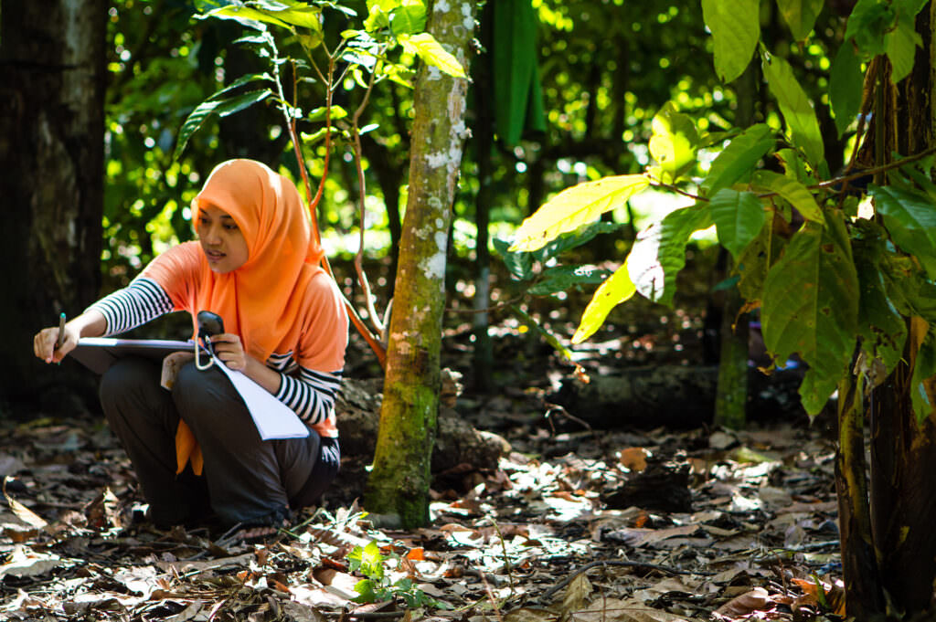 A Rainforest Alliance trainer gathering data on a cocoa farm in Indonesia.