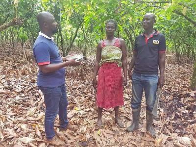 Cocoa farmers in Ghana