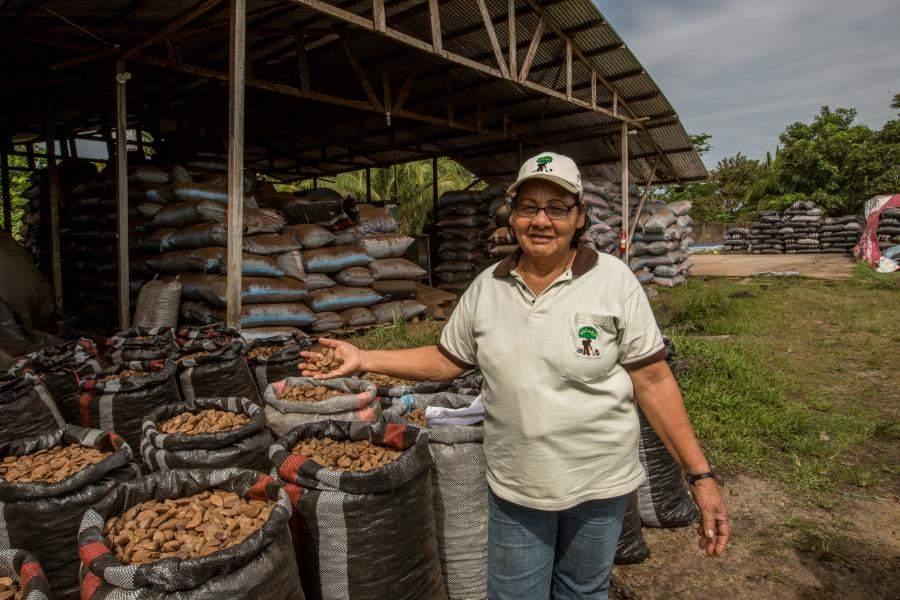 Community member shows brazil nut product.