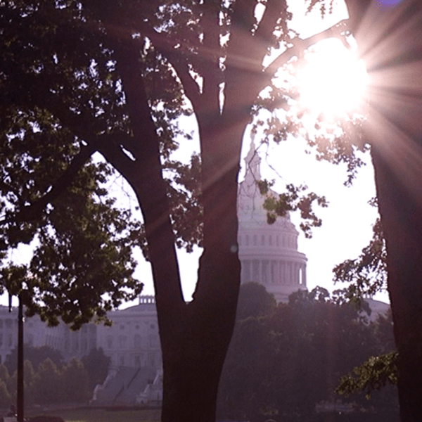 header - Capitol building