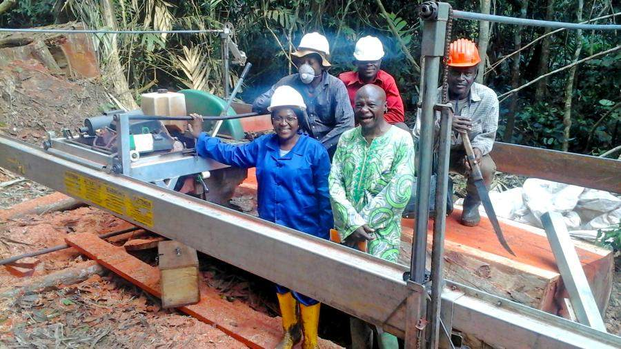 Sawmill training in Cameroon