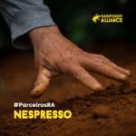 Parceria Rainforest Alliance e Nespresso completa 16 anos no Brasil